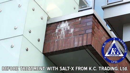 efflorescence brick casement before treatment
