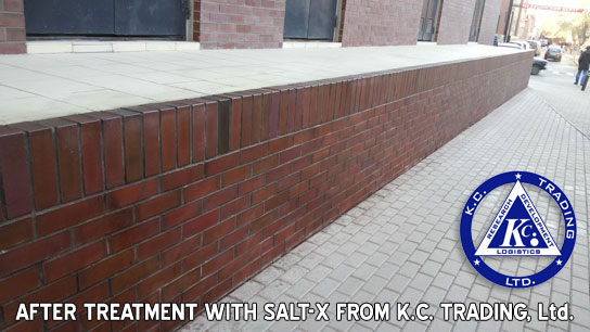 efflorescence salt-x after treatment