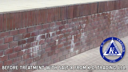 efflorescence salt-x removal